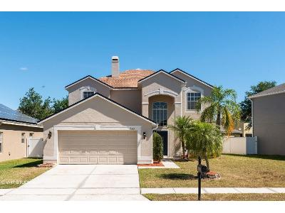 Holly-pine-cir-Orlando-FL-32820