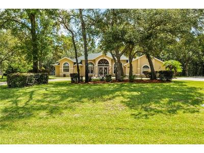 W-tall-oaks-dr-Beverly-hills-FL-34465