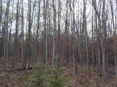 Hidden-hills-Houghton-lake-MI-48629