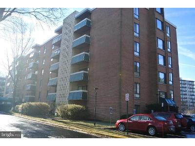 Leesburg-pike-apt-506-Falls-church-VA-22041