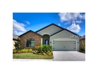 Winterset-cove-drive-Riverview-FL-33579