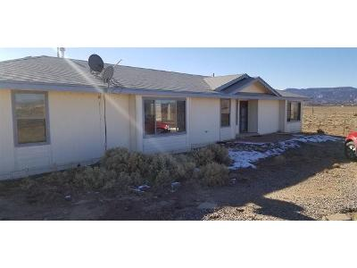 Private-drive-1727a-Abiquiu-NM-87510