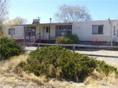 Mason-ave-Yerington-NV-89447