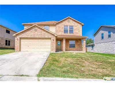 N-willow-way-Cibolo-TX-78108