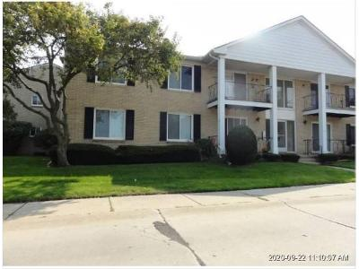 Camelot-dr-apt-50-Sterling-heights-MI-48312