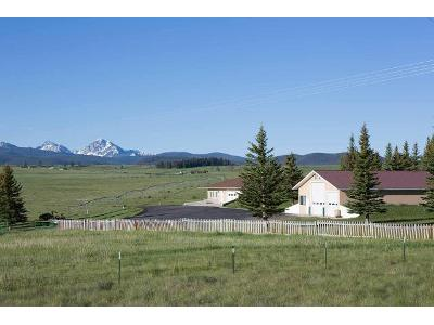 Cattle-dr-Philipsburg-MT-59858