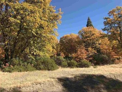 29-north-ridge-drive-Mt-shasta-CA-96067