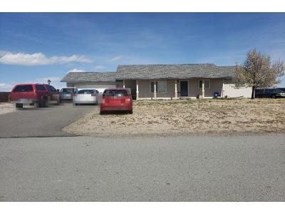 Meadowlark-dr-Fallon-NV-89406