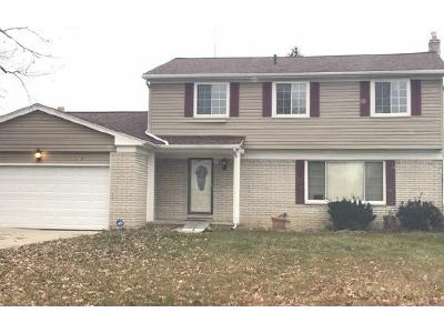 Elsworth-st-Farmington-hills-MI-48336