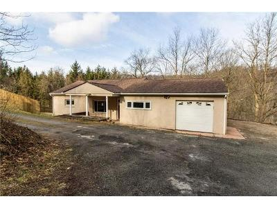 Turkey-ridge-rd-New-kensington-PA-15068