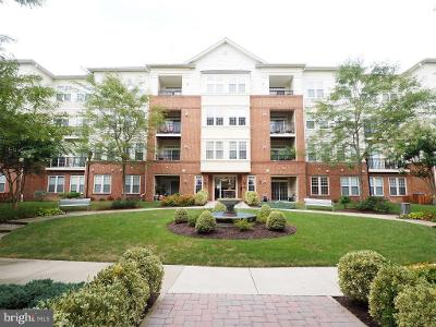 Kensington-gdns-unit-303-Ellicott-city-MD-21043