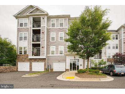 Karen-boulevard-404-Capitol-heights-MD-20743