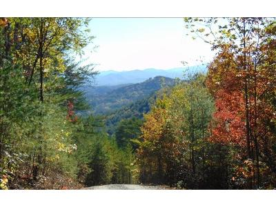 Cove-creek-lot-17-Turtletown-TN-37326