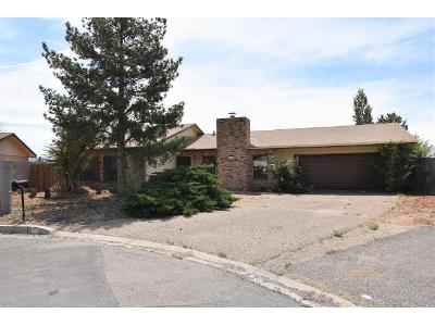Domain-loop-se-Rio-rancho-NM-87124
