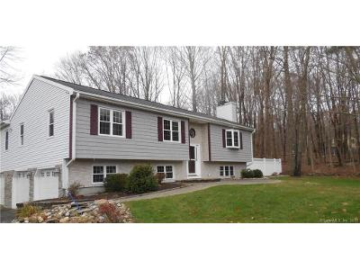 Buff-cap-rd-Tolland-CT-06084