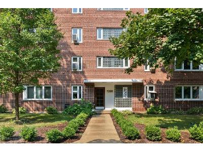 Oak-ave-apt-3nw-River-forest-IL-60305