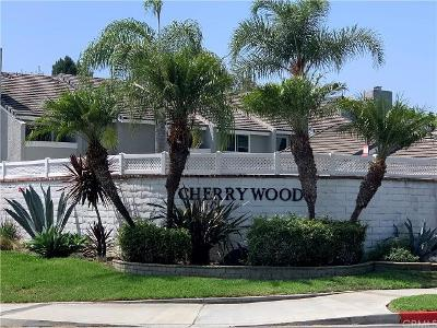 Silkwood-cir-#-44-Huntington-beach-CA-92646