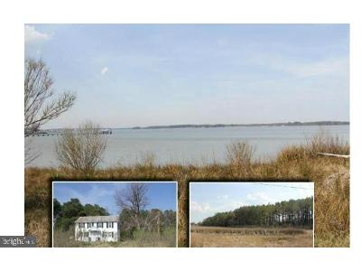 Piney-point-rd-Piney-point-MD-20674