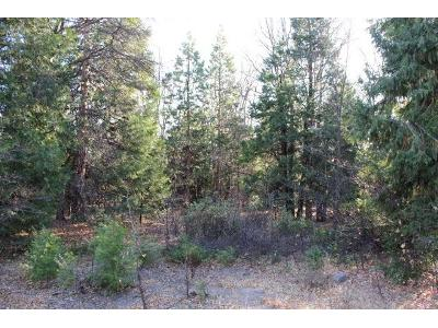 33-north-ridge-drive-Mt-shasta-CA-96067