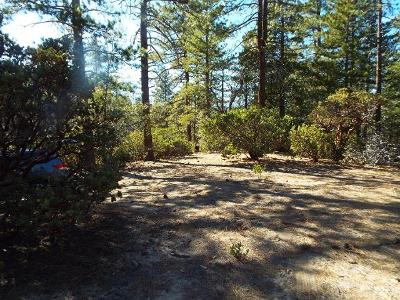 Mcgovern-Pine-cove-CA-92549