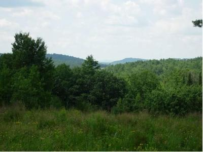 Center-hill-rd-#-5-Lisbon-NH-03585