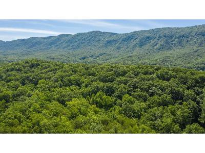 Pen-branch-rd-Maryville-TN-37803