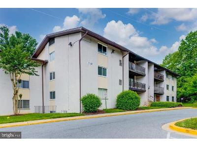 Brinkley-rd-#-9301-Temple-hills-MD-20748