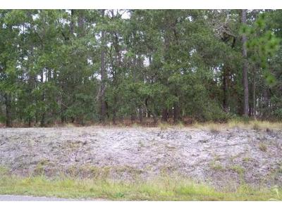 Trevino-rd-Southport-NC-28461