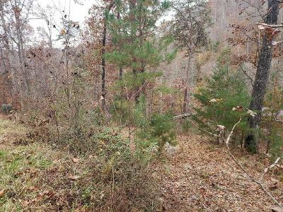 21-evergreen-circle-Caryville-TN-37714