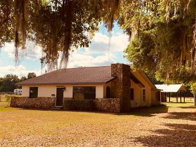 Se-150th-st-Summerfield-FL-34491