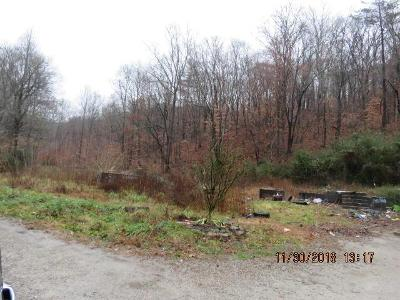 264-big-mountain-rd-Oliver-springs-TN-37840