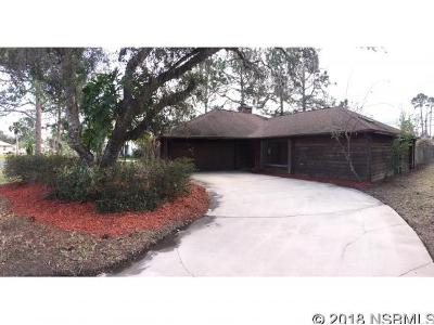 Willow-oak-dr-Edgewater-FL-32141