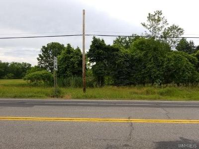Orchard-park-rd-West-seneca-NY-14224