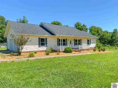 County-farm-rd-Wickliffe-KY-42087