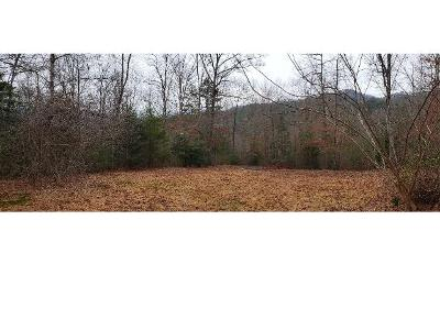 Lance-cove-rd-Hayesville-NC-28904
