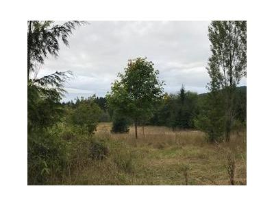 Lost-mountain-rd-Sequim-WA-98382