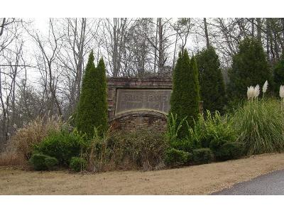 Mill-ridge-lot-24-Hiawassee-GA-30546