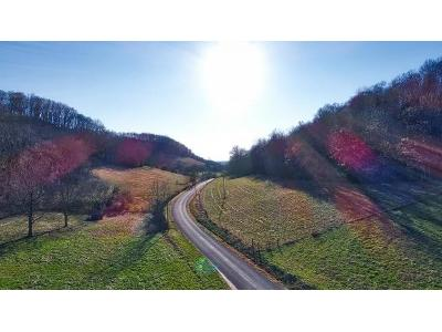 Lawrence-branch-rd-Beechgrove-TN-37018