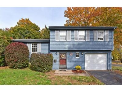 Blue-spruce-st-Middletown-CT-06457