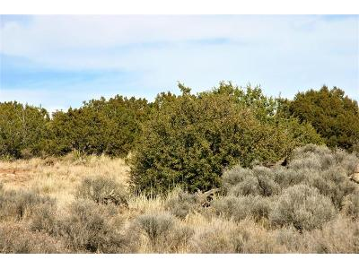 Canyon-ii-lot-143-Mountainair-NM-87036