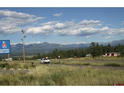Drive-Pagosa-springs-CO-81147