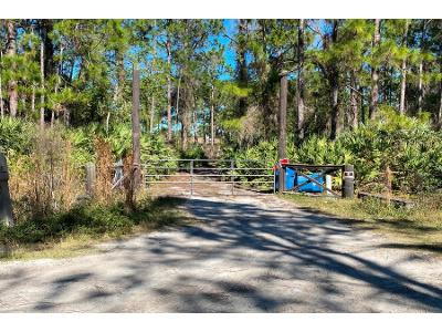 Flatwoods-rd-Mims-FL-32754
