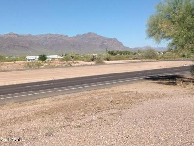 E-old-west-highway-Apache-junction-AZ-85119