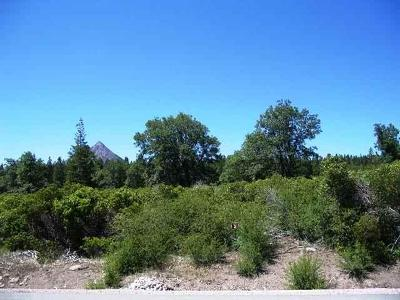 12-north-ridge-drive-Mt-shasta-CA-96067