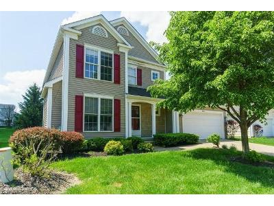 Highland-place-ct-Richmond-heights-OH-44143