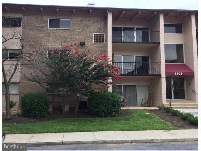 Fontainebleau-dr-apt-2324-New-carrollton-MD-20784