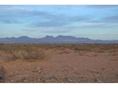 Brooks-road-Douglas-AZ-85607