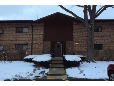 Willow-ln-apt-c219-Willow-springs-IL-60480