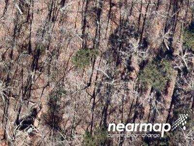 Sherwood-ln-Harriman-TN-37748