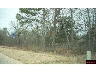 A-hwy-62-east-Mountain-home-AR-72653
